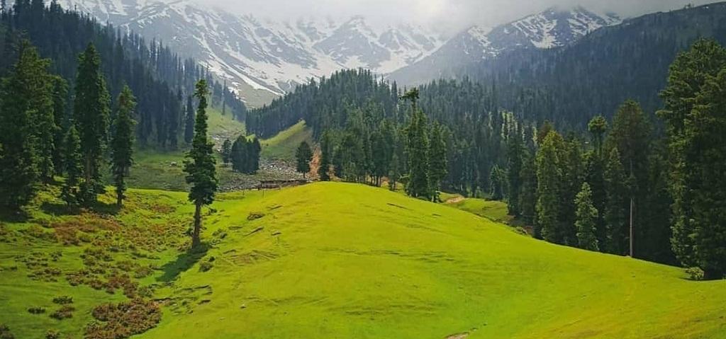Mahu in Kashmir